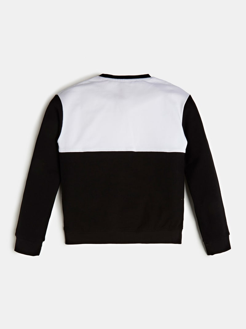 SWEATSHIRT LOGO VOORKANT COLOR BLOCK image number 1