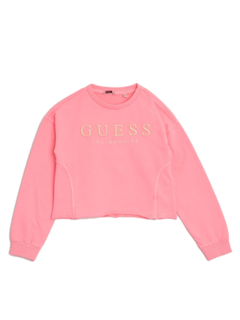 Embroidered Logo Pullover (7-14)