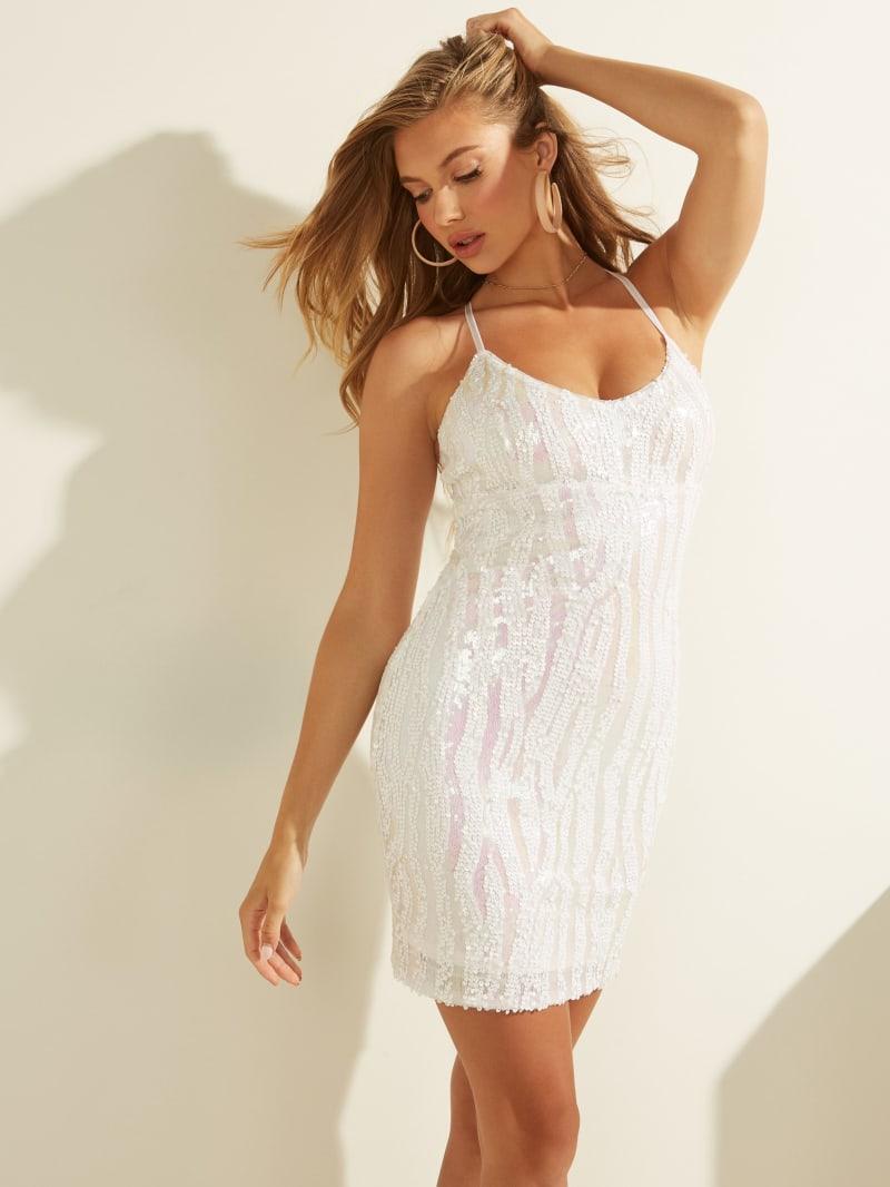 Janelle Mesh Dress